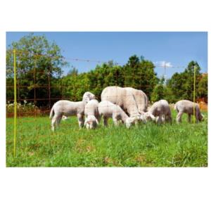 ogrodzenie dla owiec siatka90/50